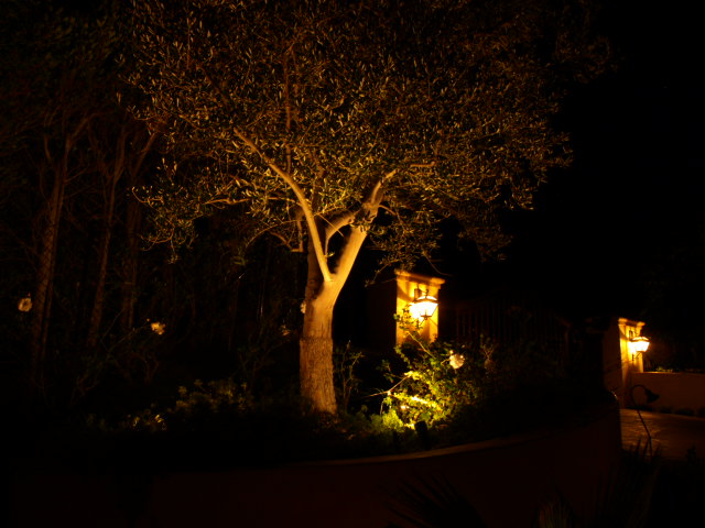 Lighting Newbury Park Landscape Lights