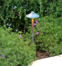 Lighting  Newbury Park Landscape Lighting Mushroom Light